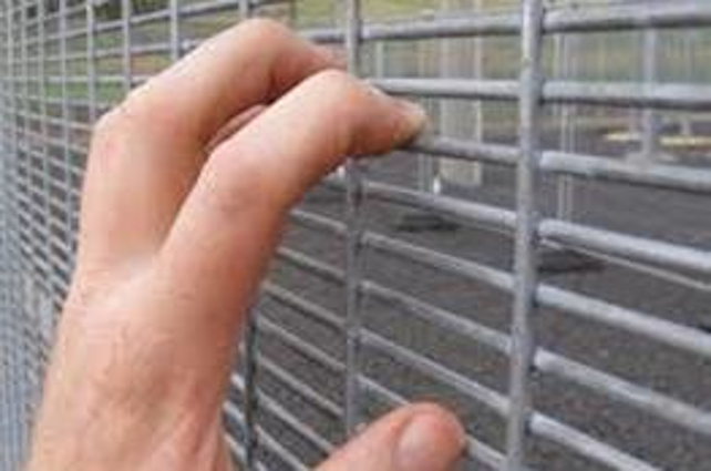 Anti Climb Welded Mesh